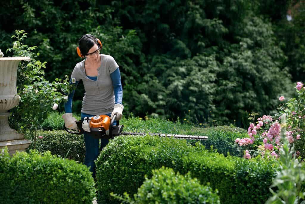 Кусторез электрический садовый, отзывы, где купить профессиональный телескопический электрокусторез, обзоры кусторезов